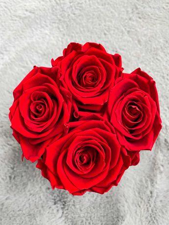 Wieczne róże 5,5-6cm + BOXY na róże, pudełka zamykane