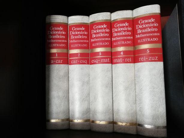 Dicionários Brasileiros