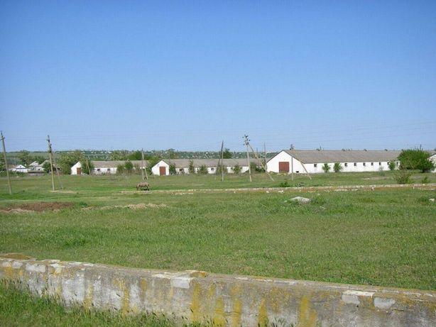 Продам ферму 10000 м² помещений, животноводческий комплекс