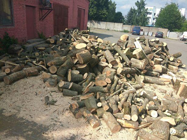 Видалення дерев, порізка дров, демонтаж,, земельні роботи