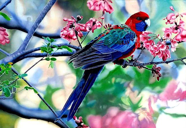 картина *Попугай с цветочками*