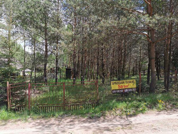 Działka rekreacyjna Kiełpiny