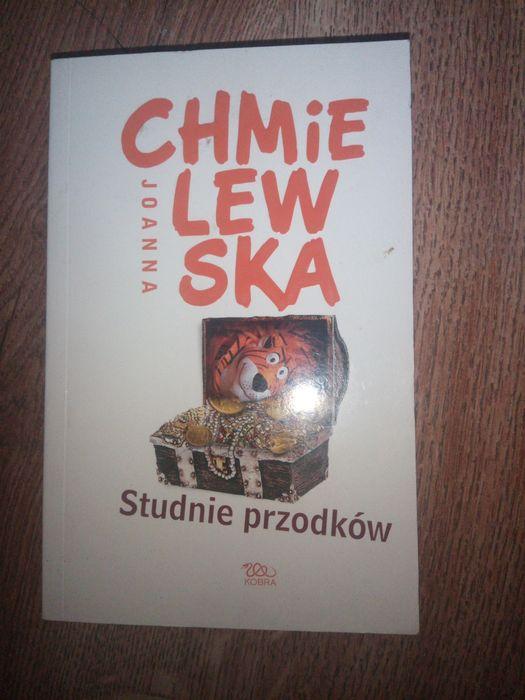 Książka Joanna Chmielewska Studnie przodków Sępólno Krajeńskie - image 1