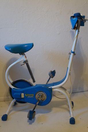 Rower Treningowy Ginny Retro Vintage