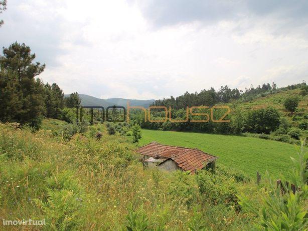 Quinta de 10 hectares com Rio - Várias Casas
