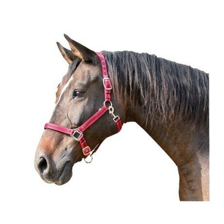 Kantar dla koni Mustang, czerwony rozm Pony, Cob, Full