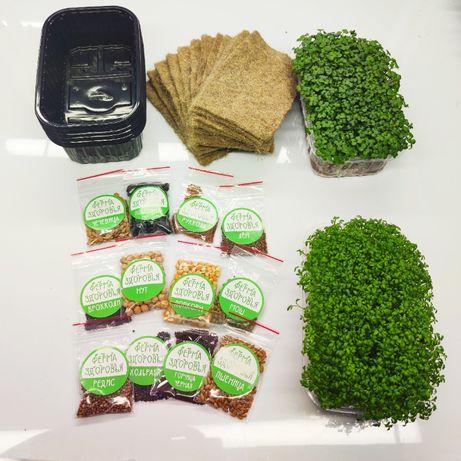 Набор для выращивания микрозелени дома на подоконнике, микрогрин дома