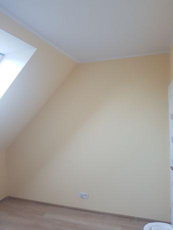 Malowanie, Gipsowanie, Panele podłogowe, Remonty, wolne terminy