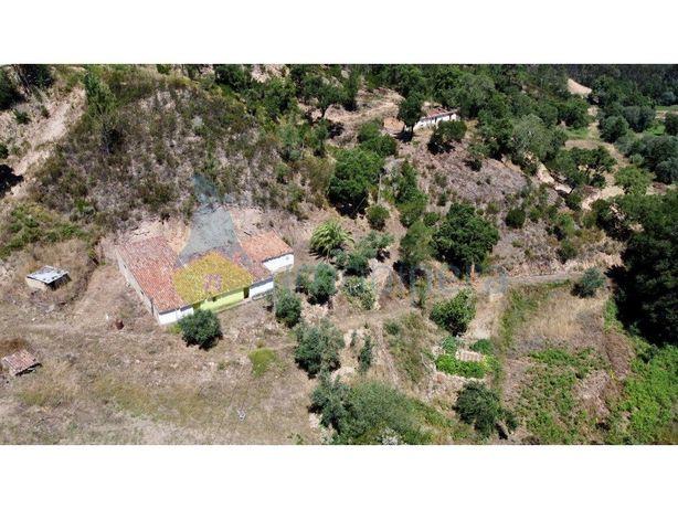 Quinta em Monchique  Farm in Monchique