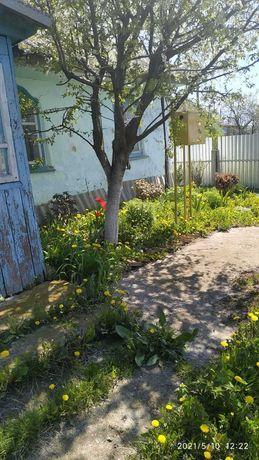 ЗЕМЕЛЬНА ДЕЛЯНКА ДАЧА Земля для дачи.Есть огород.Сад.