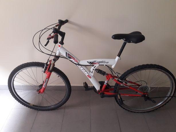Rower Proximo  koła 24c
