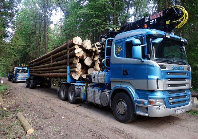 Sprzedam drewno tartaczne, surowiec drzewny