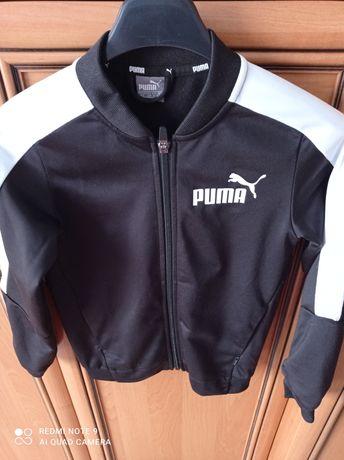 Sprzedam bluza Puma.
