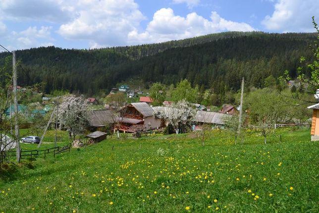 Продам земельну приватизовану земельну ділянку, в Яремче (Ямна).