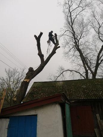 Спил дерев. Подрібнювач гілок/Спил деревьев. Измельчитель веток.
