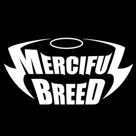 Merciful Breed band шукає драмера!