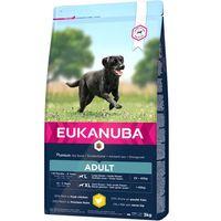 Eukanuba Adult Large 15kg + 3kg (cães de raças grandes)
