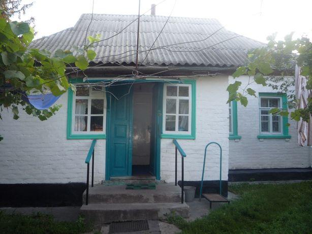 продам срочно дом в Лохвице