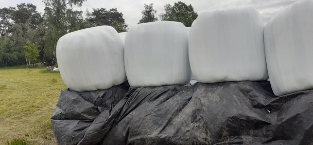 Sianokiszonka bele baloty