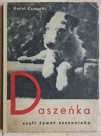 Karol Czapek - Daszeńka czyli żywot szczeniaka