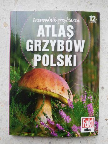 Atlas grzybów Polski GRZYBY