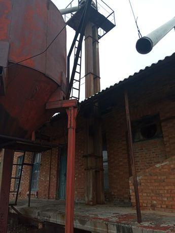 Нория 12 м.,25 тонн/час
