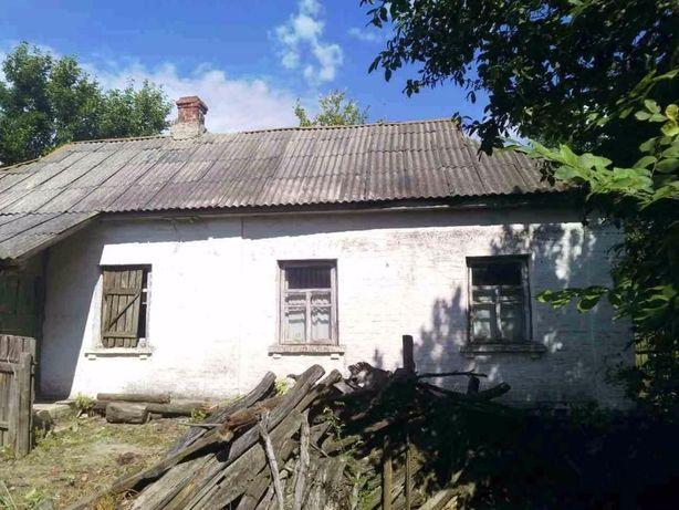 Продам дом с земельным участком с. Новый Белоус