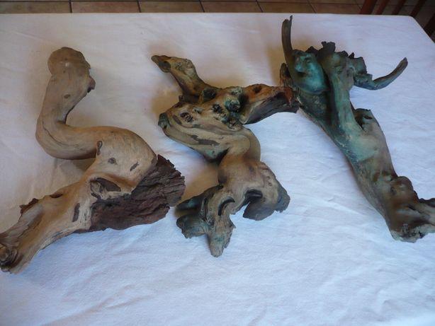 KORZENiE ozdobne 35 --40cm - na półkę lub do terrarium
