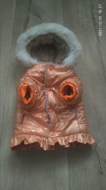 Одежда куртка для мелких собак