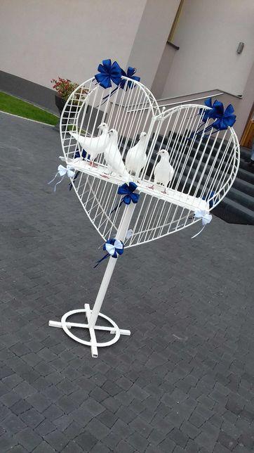 Białe gołębie na ślub Dębica