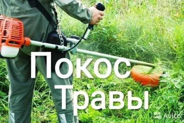 Покос травы,Берислав.