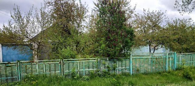 2 дома с хоз.постройками 40 соток в центре села Соколовка сад речка