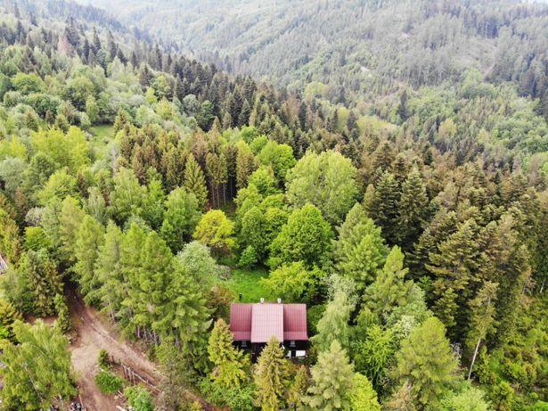 HabdaSówka - drewniany dom w środku lasu, Przybędza okolice Żywca