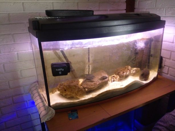 Akwarium 240 l  z wyposażeniem i rybami