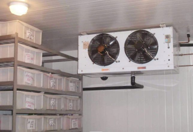 Агрегат охолодження печериць грибів шампіньйонів, камера зберігання