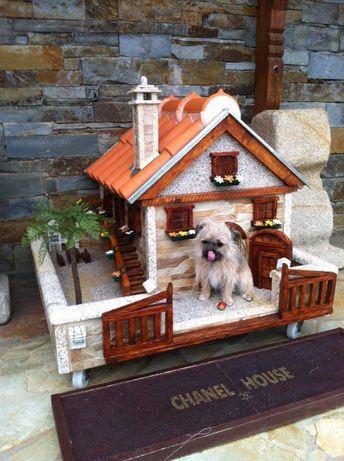 Casa para cão