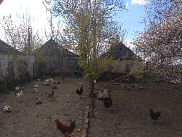Дом пгт.Михайловка 90 и 30 м.кв. продажа/обмен.