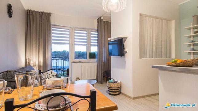 Apartament z wydzieloną sypialnią , kuchnią i łazienką z wyposażeniem
