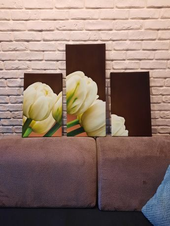 Obraz 3 części tulipany