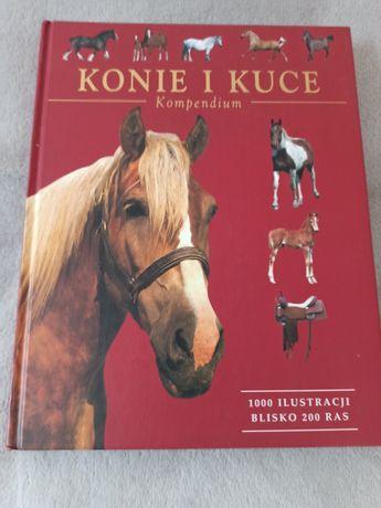 Konie i kuce. Kompendium