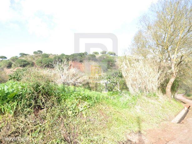 Lote de terreno no Parque Natural da Serra da Arrábida