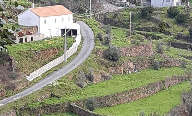 Vendem-se 2 moradias (principal e palheiro) em 2960 m2 - Troviscal