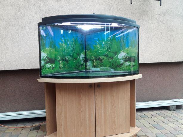 Akwarium z szafką 350l narożne