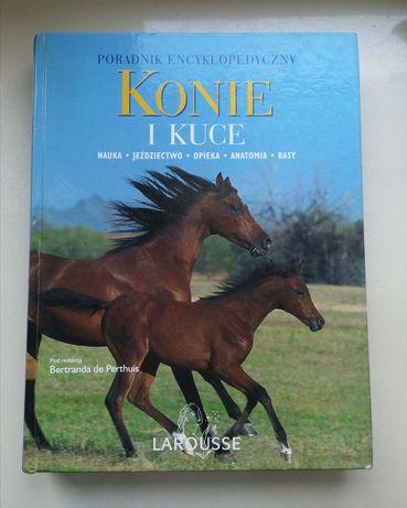 Konie i kuce poradnik