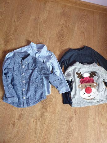Koszule i bluzki dla chłopca