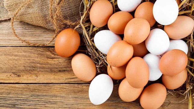 Jajka ekologiczne jajka z wolnego wybiegu