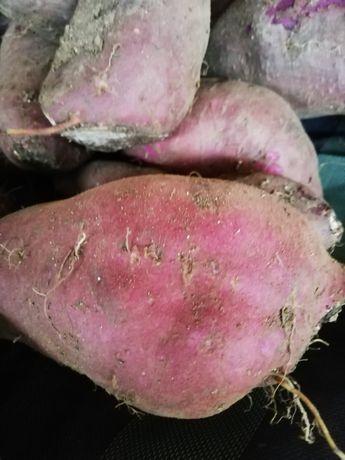 Vendo batata doce