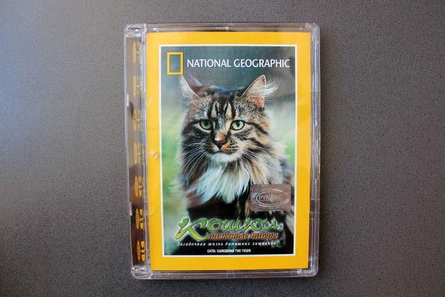 DVD «Кошки: ласковые тигры» Nat.Geogr., англ/русск, лицензия