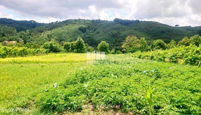 Venda Terreno com 2100 m2, Gove, Baião