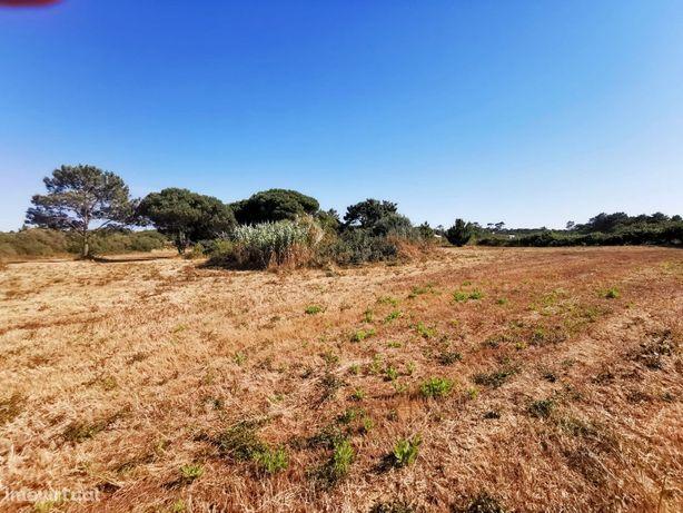 15.600 m2 / 2km Praia da Foz/ construção Moradia Terrea / 35 km Lisboa